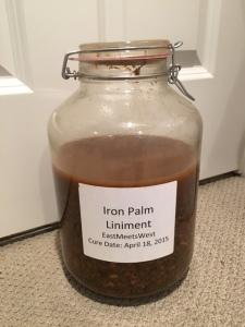 Iron Palm